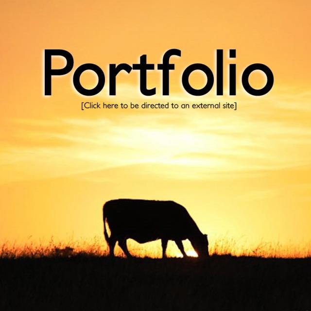 portfolioimage