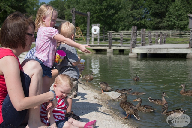 Feeding the ducks was quite a hit.